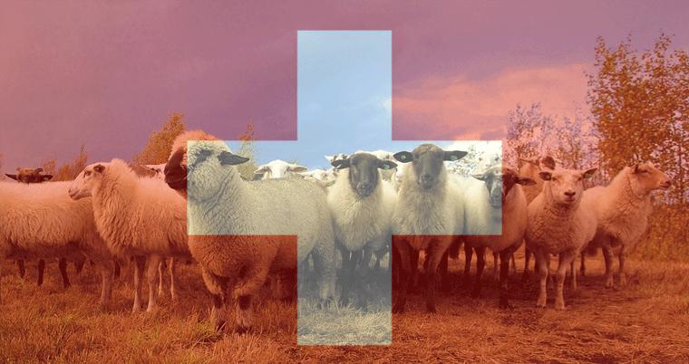 Einwohner Schweiz